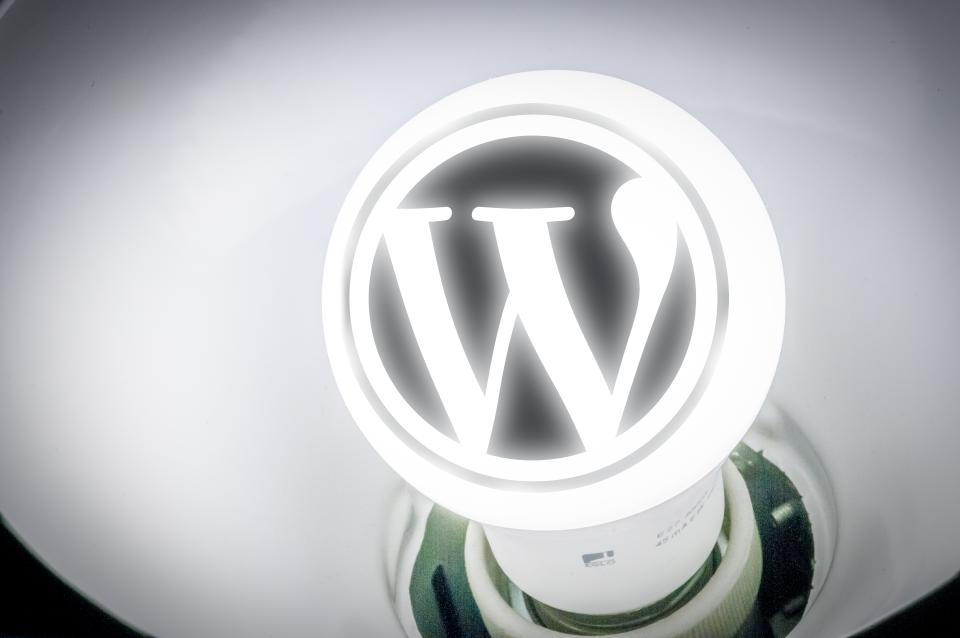 Glühbirne mit Wordpress-Logo als Symbol für hoffentlich gute Wordpress-Ideen